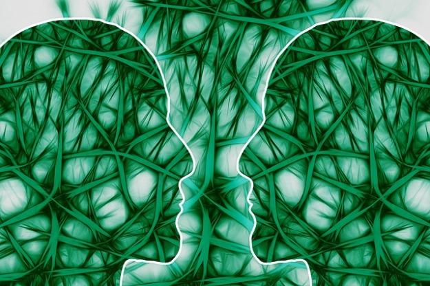 neural-pathways-221719_640